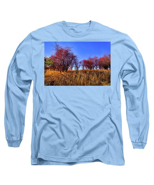 Long Sleeve T-Shirt featuring the photograph Autumn Sun by David Patterson