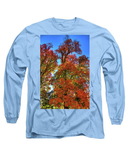 Long Sleeve T-Shirt featuring the photograph Backlit Autumn by David Patterson