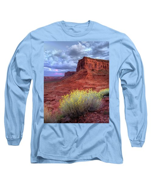 Desert Bouquets On A Stormy Eve Long Sleeve T-Shirt
