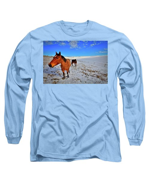 Long Sleeve T-Shirt featuring the photograph Geldings In The Snow by David Patterson