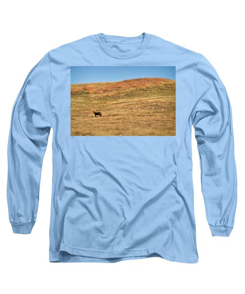 Grazing In The Grass Long Sleeve T-Shirt