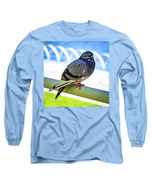 Mr. Pigeon Long Sleeve T-Shirt