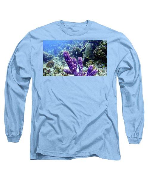 The Purple Sponge Long Sleeve T-Shirt