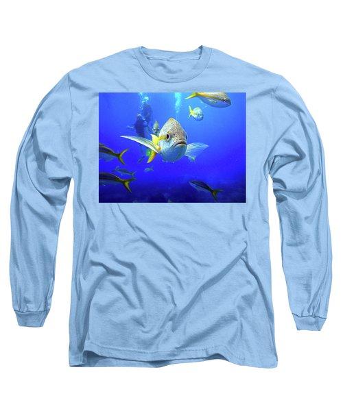 Yellowtails Long Sleeve T-Shirt