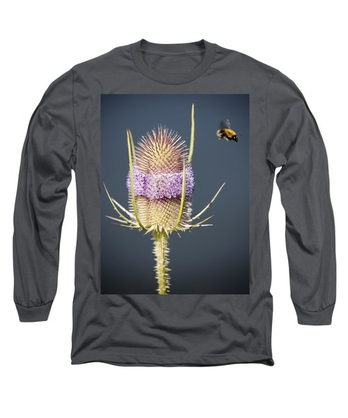 Beautiful Flowering Teasel Long Sleeve T-Shirt