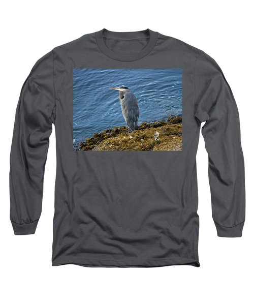 Long Sleeve T-Shirt featuring the photograph  Blue Heron On A Rock by Eti Reid