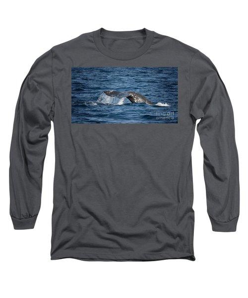 Whale Fluke In Dana Point Long Sleeve T-Shirt