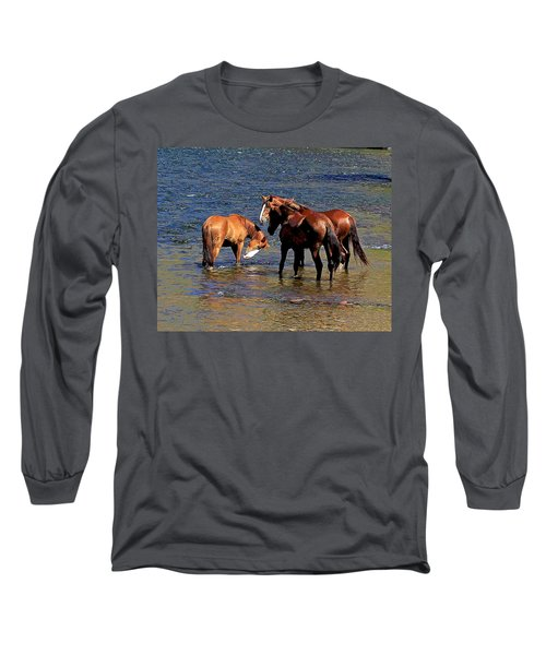 Arizona Wild Horses On The Salt River Long Sleeve T-Shirt