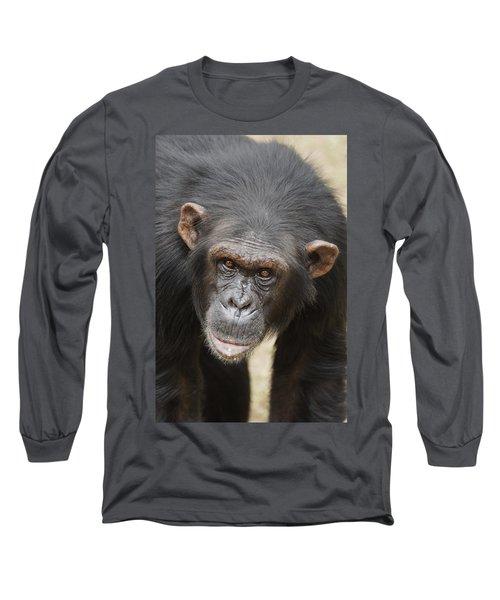 Chimpanzee Portrait Ol Pejeta Long Sleeve T-Shirt
