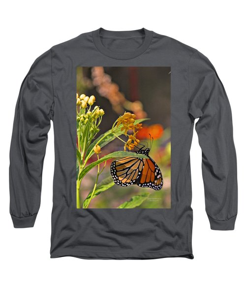 Clinging Butterfly Long Sleeve T-Shirt