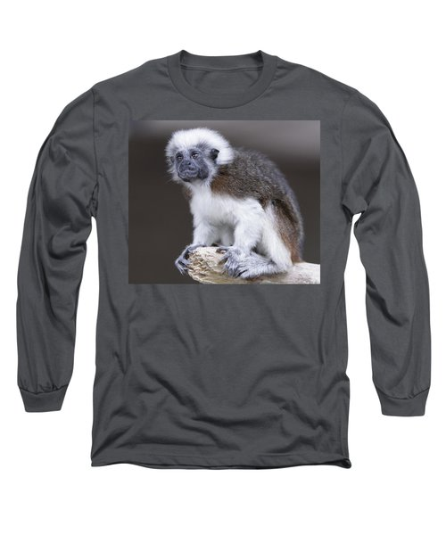 Long Sleeve T-Shirt featuring the photograph Cotton Top Tamarin by Shoal Hollingsworth