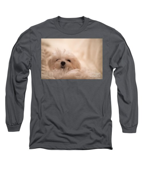 Fresh From A Long Winter's Nap Long Sleeve T-Shirt