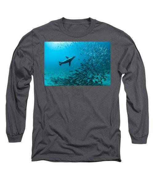 Galapagos Sea Lion Hunting Fish Rabida Long Sleeve T-Shirt