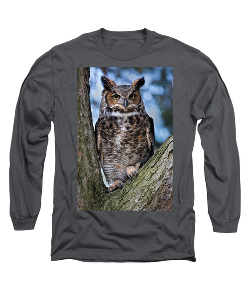 Great Horned Owl Long Sleeve T-Shirt