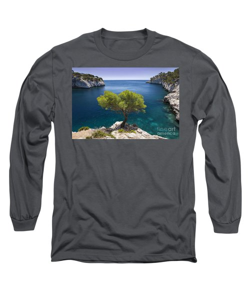 Lone Pine Tree Long Sleeve T-Shirt