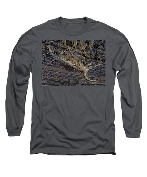 Nudibranch Sitting On A Pen Shell Long Sleeve T-Shirt