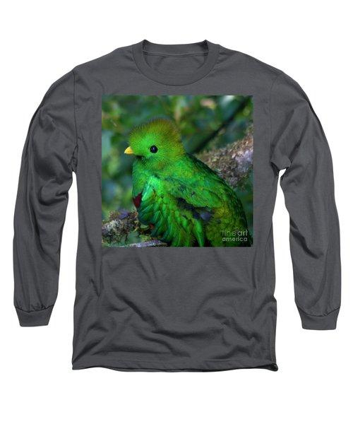 Quetzal Long Sleeve T-Shirt