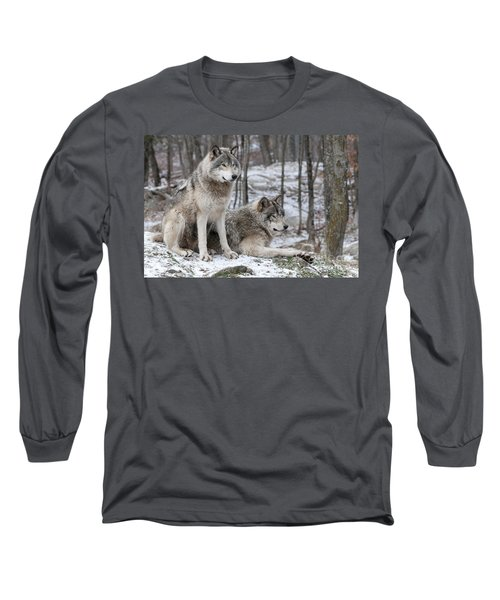 Timber Wolf Pair In Forest Long Sleeve T-Shirt