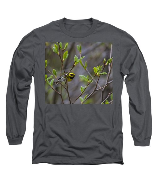 Townsends Warbler Long Sleeve T-Shirt by Doug Lloyd
