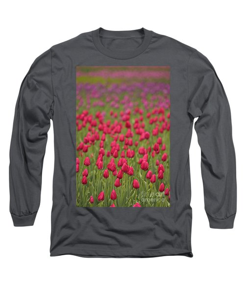 Tulip Beds Forever Long Sleeve T-Shirt