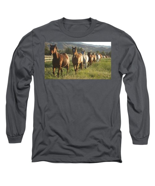 Montana  Big Sky Long Sleeve T-Shirt