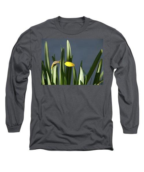 1st Daff Long Sleeve T-Shirt by Joe Schofield