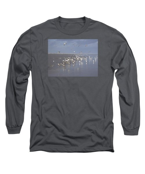 Birds At The Beach Long Sleeve T-Shirt