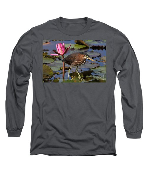 Green Heron Photo Long Sleeve T-Shirt