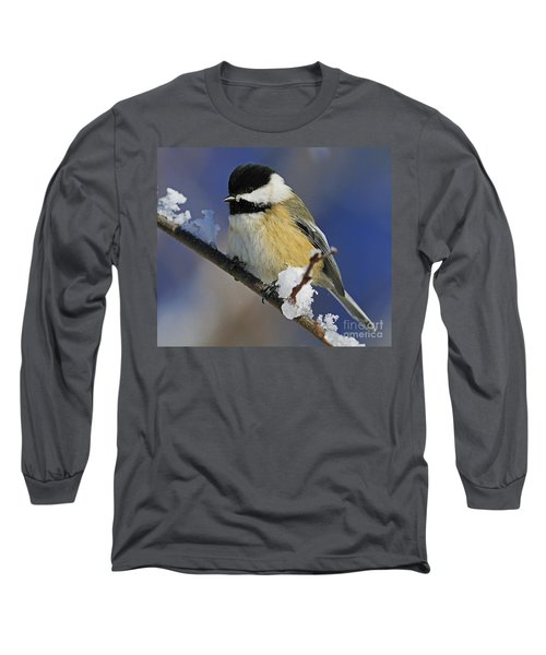 Winter Chickadee... Long Sleeve T-Shirt