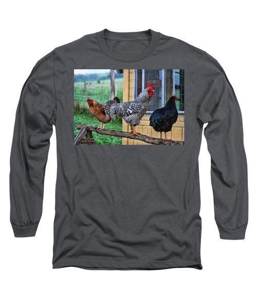Long Sleeve T-Shirt featuring the photograph 3 Chickens by Denise Romano