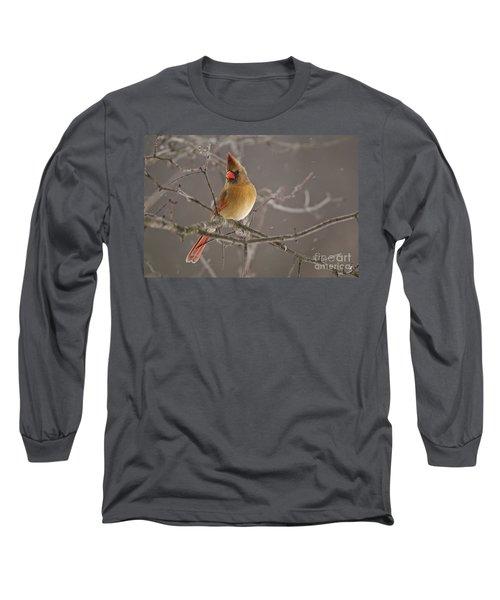Female Northern Cardinal Long Sleeve T-Shirt