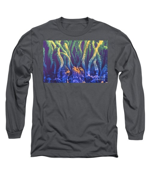 Rods And Cones, Sem Long Sleeve T-Shirt