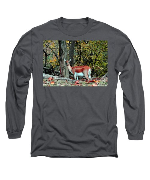A Deer Look Long Sleeve T-Shirt by Lydia Holly