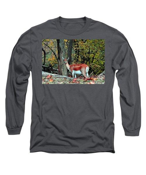 A Deer Look Long Sleeve T-Shirt