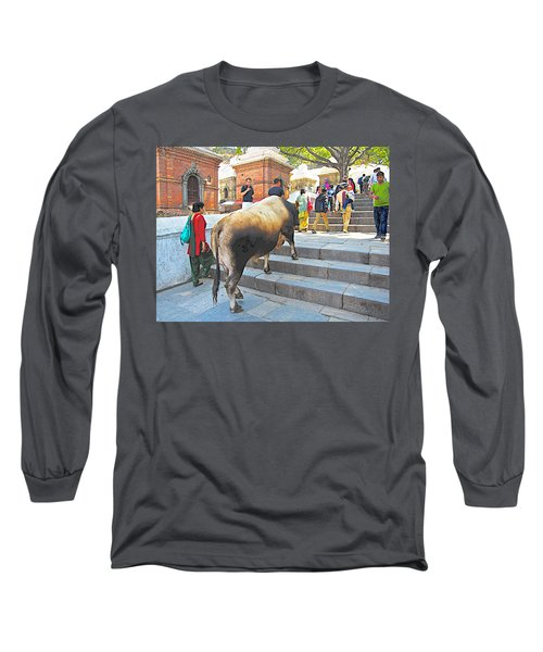 A Holy Cow Climbing Steps From Bagmati River In Kathmandu-nepal  Long Sleeve T-Shirt