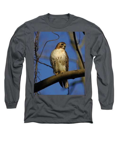 Long Sleeve T-Shirt featuring the photograph A Red Tail Hawk by Raymond Salani III