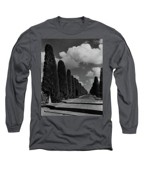 A Street Lined With Cypress Trees Long Sleeve T-Shirt