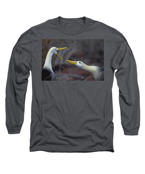 A Wave Albatross Couple In A Courtship Long Sleeve T-Shirt
