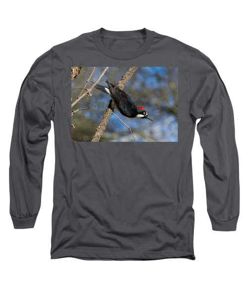 Long Sleeve T-Shirt featuring the photograph Acorn Woodpecker by Rima Biswas