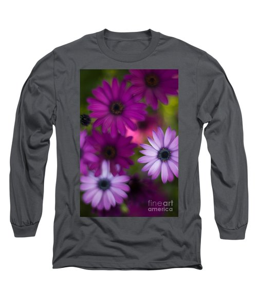 African Daisy Collage Long Sleeve T-Shirt by Mike Reid
