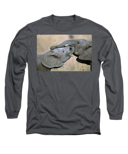 African Elephant Calves Playing  Long Sleeve T-Shirt