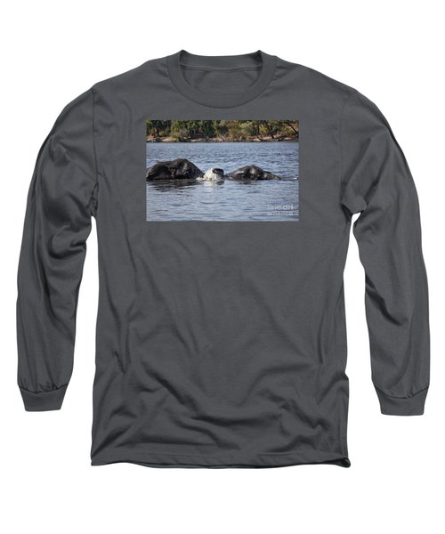 African Elephants Swimming In The Chobe River Botswana Long Sleeve T-Shirt by Liz Leyden