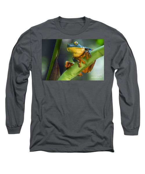 Agalychnis Calcarifer 4 Long Sleeve T-Shirt
