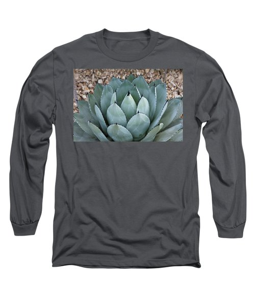 Long Sleeve T-Shirt featuring the photograph Agave by Lana Enderle