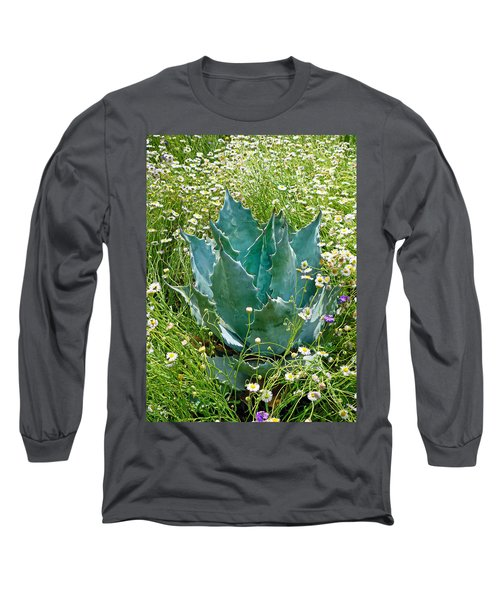 Agave Swaddled In Asters Long Sleeve T-Shirt
