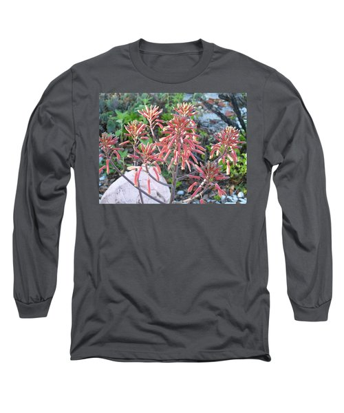 Long Sleeve T-Shirt featuring the photograph Aloe In Bloom by Belinda Lee
