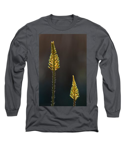 Aloe Plant Long Sleeve T-Shirt