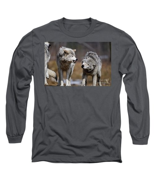 Long Sleeve T-Shirt featuring the photograph Alpha Displeasure by Wolves Only