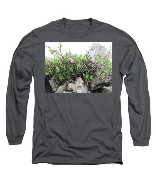Long Sleeve T-Shirt featuring the photograph Alpine Beauty by Pema Hou