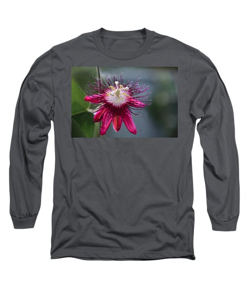 Amazing Passion Flower Long Sleeve T-Shirt